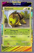 🌈Tortipouss - HS02:Déchainement - 67/95 - Carte Pokemon Neuve Française