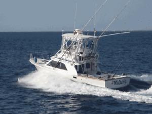 Playa del Carmen Deep Sea Fishing Charter