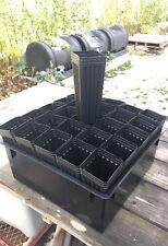 "Twenty-five 8"" Mini Tree Pots with tray"