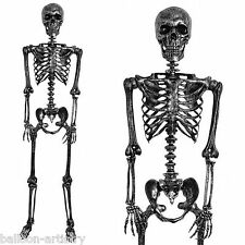 5ft Negro Plata metálico de tamaño real Halloween Decoración Esqueleto Humano Poseable