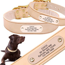 Genuine Leather Personalized Dog Collars Custom ID Name Tags Metal Buckle Pink