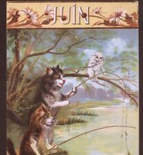 "RARE..! ""JUIN"" (JUNE)  BOULANGER FRENCH TITLE,CATS FISHING MONTHS/YEAR,POSTCARD"