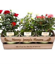 Personalised wooden planter & 3 pots. Gardening gift, allotment, greenhouse, mum