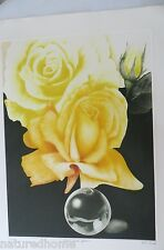 "G.H.  ROTHE ORIGINAL MEZZOTINT "" GLASS & GOLD "",  YELLOW ROSE ,unframed"
