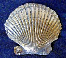 "Lost Wax Cast Bronze Golden ""Scallop Shell""  Mollusk Decorative Sculpture"