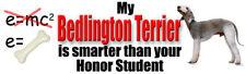 BEDLINGTON TERRIER SMARTER THAN HONOR STUDENT Sticker