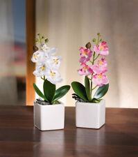 Orchidee Kunstpflanze Blume Künstlich Deko Pflanze Topfpflanze Blüten 2er Set
