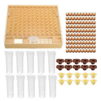 Premium Queen Bee Rearing Kit Cell Cup Holder Box Cage Catcher Beekeepers