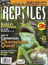 Reptiles Magazine Chameleon Rare Pythons Golden Dart Frogs Baby Turtle 2012