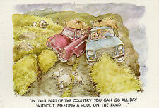 Funny Postcard 'You can go all day......' Two cars bumping into each other (P5)