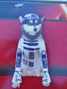 Disney Star Wars R2-D2 Pet Costume - Size Small - Halloween