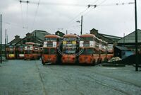 PHOTO London Transport Trolleybus Lineup at Fulwell Depot in 1962 - Cliff Essex