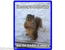 Funny Squirrel Feeder Empty Refrigerator Magnet