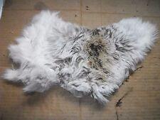 NICE tanned JACK RABBIT FUR pelt skin NATIVE CRAFTS supplies bag purse pouch R4