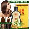 200ml Gingembre Shampooing Contrôle Huile Anti Perte de Cheveux Traitement Soin