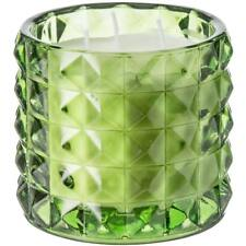 Paddywax Botanik Green Tea and Grasses Glass Soy Candle - 3-Wick, 8 oz.