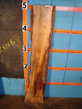"#8643 1 11/16"" thick ambrosia wormy maple Slab wood lumber"