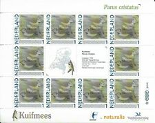 NETHERLANDS , Birds sheetlet of 10 MINT NH