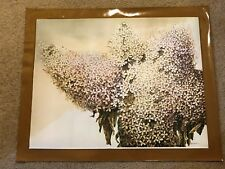 """AUTHENTIC ARTAGRAPH OIL PAINTING"""" DRIED HYDRANGEA BY MANABU SAITO SIGNEd 89/1000"""
