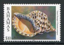 BAHAMAS 1997 Muschel Shell $10   914 JZ 1997 ** MNH