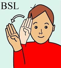 British Sign Language (BSL) A Beginner's Guide on 2-Disc DVD