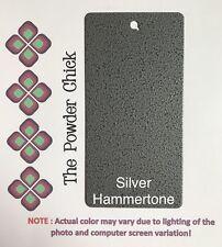 Silver Hammertone 39/90020 Powder Coating Paint 1lb 6oz Bag NEW
