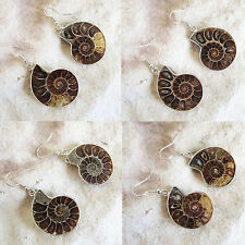 Natural Polished AMMONITE FOSSIL Stone DANGLE EARRINGS - Choice of stones