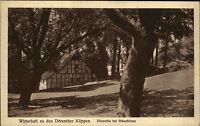 Dörenthe bei Ibbenbüren ~1925 Garten Idyll Wirtschaft zu den Dörenther Klippen
