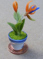 1:12 Naranja Y Azul Ave Del Paraíso en una olla Casa de muñecas en miniatura de jardín de flores