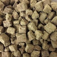 Artemia FD (Freeze Dried) 1kg - Bulk Bag
