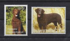 Dog Photo Full Body Postage Stamp Collection Liver Curly Coated Retriever Mnh