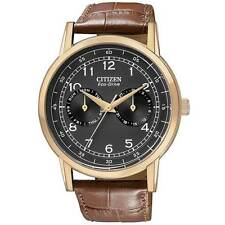 CITIZEN AO9003-08E Eco-Drive Black Dial Brown Leather Day Date Men's Watch