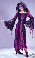 Dracula's Bride Vampire Vampiress Gothic Woman Dress Up Halloween Adult Costume