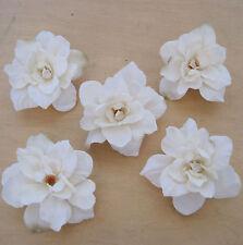 "5 Piece Lot 2.5"" Cream White Apple Blossoms Flower Hair Clips,Wedding,Luau"