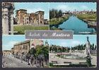 MANTOVA CITTÀ 55 SALUTI da... VEDUTINE Cartolina viaggiata 1961