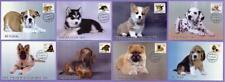 Kazakhstan 2019. 8 Maxicard (Maximum cards). Fauna. Puppies. Dogs