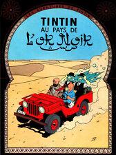 "18x24""Decoration Canvas.Interior design Art.Tin dog.French.Tintin driving.6398"