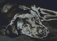 "Black Labrador Dog Puppy Counted Cross Stitch Kit 14"" x 10"" 35.5cm x 25.cm 14 ct"
