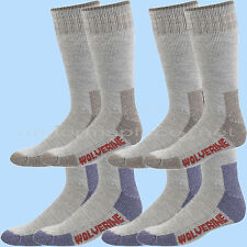 Wolverine Men Socks HUNTER WOOL Over the Calf 2 pairs Boot Sock Brown Navy Large