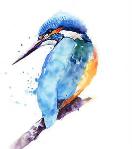 Limited Edition Print  KINGFISHER original watercolour by HELEN APRIL ROSE   242