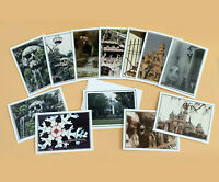 Authentic Disneyland Vintage Photo Art Notecards with Envelopes You Pick from 13