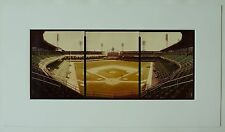 Chicago White Sox, Comisky Park Baseball Stadium Panoramic Color Photos
