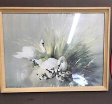 "Swans Vintage print Enchanted Isle Vernon Beauvoir Ward Original Frame 16"" X 12"""