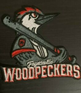 "2019 FAYETTEVILLE WOODPECKERS PATCH LITTLE LEAGUE WORLD SERIES BASEBALL 3.5"""