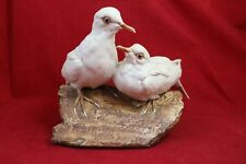 Giuseppe Tagliariol Bepi Tay Italy Roof Tile Turtle Doves Limited 66/500