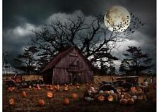 Hoffman Fabrics Haunted Halloween Pumpkin Cotton Panel T4863-192-Pumpkin