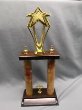 1st place star trophy award 2 post style weighted base