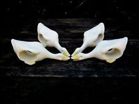 VTG Napkin Rings Geese Goose Bisque Glass Porcelain Ceramic Lake Decor Dining