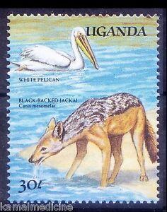 White Pelican, Water Birds, Black Backed Jackel, Uganda 1989 MNH
