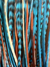 Five Genuine 7-11 Inches Indian Blue Feathers for Hair Extension Salon Quality G